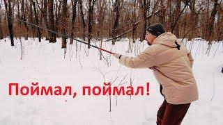 Зимняя рыбалка в лесу