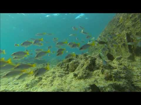 SANTA MARIA CABO VERDE -- ILHA DO SAL  -- SNORKELING IN THE SOUTH OF ISLAND