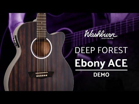 Washburn Deep Forest Ebony ACE Demo