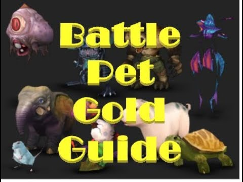 Breg's Battle Pet Gold Guide: What Pets To Sell, Addons, How To Flip Pets