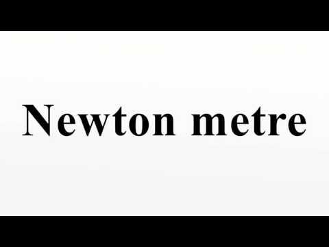Newton metre