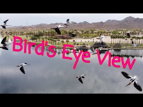 DJI Mavic Air, Bird's Eye View Of Estrella Mountain Ranch Lake