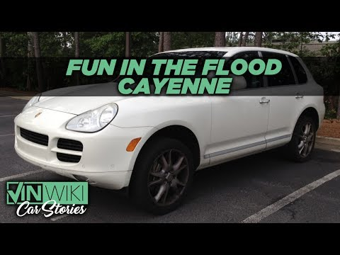 Fun in the Flood Cayenne