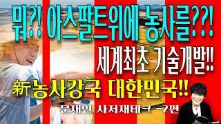대통령의 내집마련 -2편 feat.농업신기술 아스팔트위…