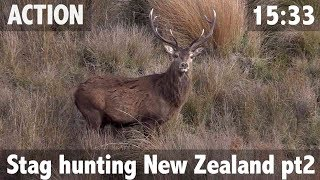 Stag hunting New Zealand pt2