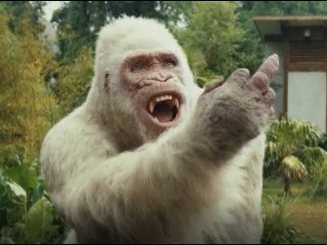 rampage george finger gif
