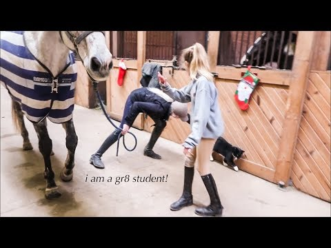 Student Gives Trainer Lesson // Grooming & Tacking Up