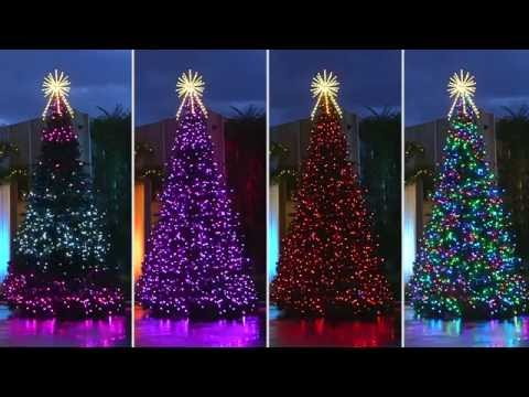 Large Outdoor Commercial Christmas Decorations  from i.ytimg.com