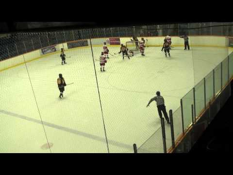 Aurora Tigers at Hamilton Red Wings OJHL Highllights February 10 2014