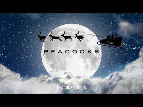 Peacocks Christmas Advert 2017   #XMASFACTOR