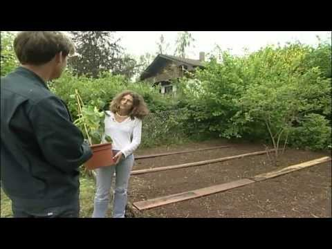 Gartentipps Beet anlegen ein Bauernbeet selbst gemacht