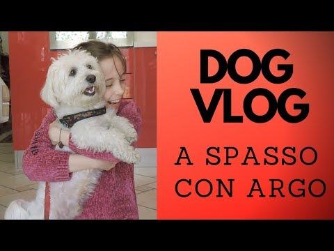 Dog Vlog - A SPASSO COL MIO CANE ARGO