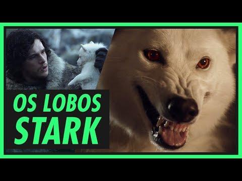 Os lobos Stark e seus donos | GAME OF THRONES