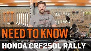 Need To Know - Honda CRF250L Rally at RevZilla.com thumbnail