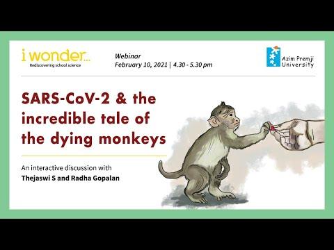 i wonder... Webinar : SARS-CoV-2 & the incredible tale of the dying monkeys
