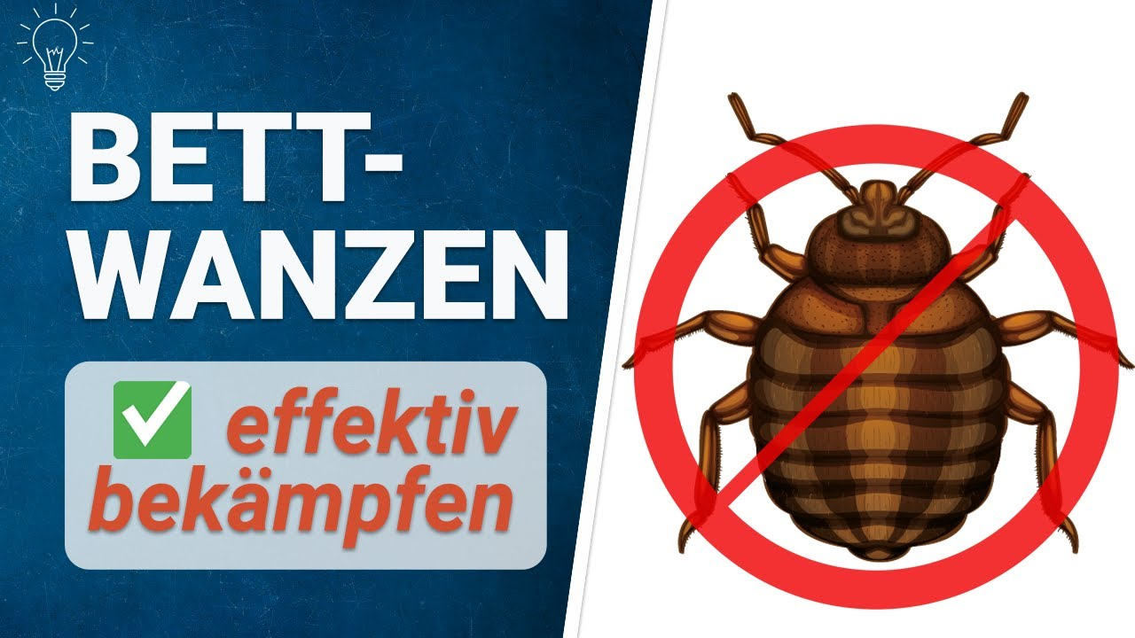 Bettwanzen Bekämpfen Bettwanzen Loswerden! Kein Gift - Kein Problem! Greenhero Frost Spray - Youtube