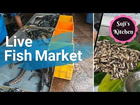Live Fish Varieties|| மதுரை மீன் மார்க்கெட்