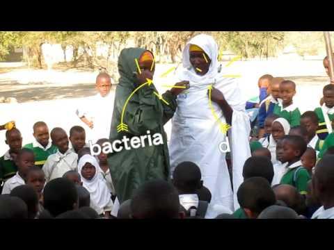Seminarios de higiene dental en escuelas de Tanzania