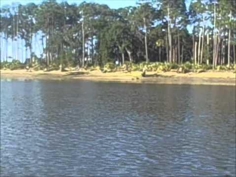 Fishing the Skidaway Narrows