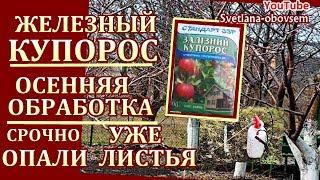 видео Осенняя обработка почвы в саду