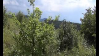 Седовласый Кавказ(Абхазия, август 2012. Поездка на оз. Амктел., 2012-11-17T23:04:18.000Z)