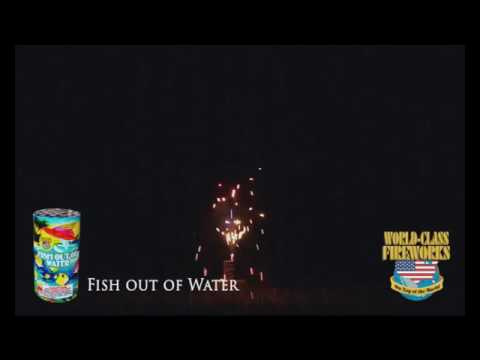 Fish Out Of Water - World Class Fireworks