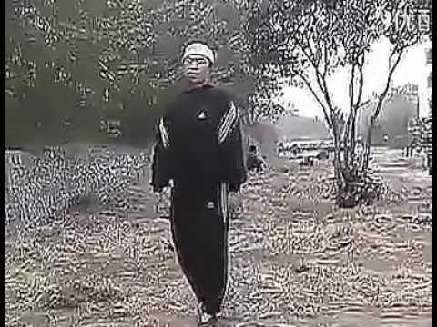 Xin Yi Quan - Yang Hai Ming