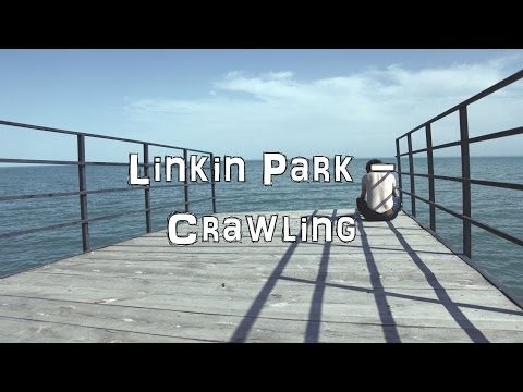 Linkin Park - Crawling [Acoustic Cover.Lyrics.Karaoke]