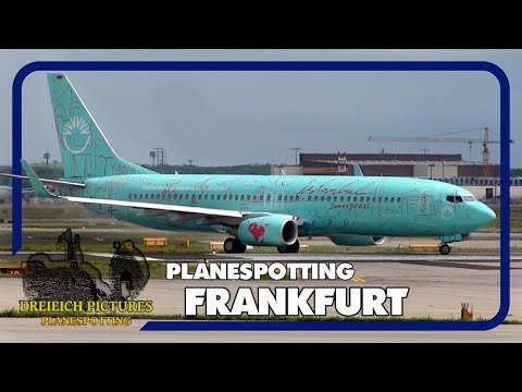 Planespotting Frankfurt Airport | August 2017 | Teil 1