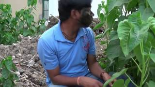 Missing 500 Rupees | A short Comedy (Episode-4) Pk Comedy Creation
