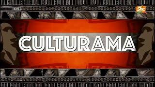 🔴#2STVREPLAY CULTURAMA AVEC IBRAHIMA DIALLO | SAMEDI 23 JANVIER 2021
