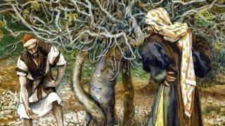 Читаем Евангелие вместе с Церковью 28 января 2020. Евангелие от Марка. Глава 11, ст.11-23.