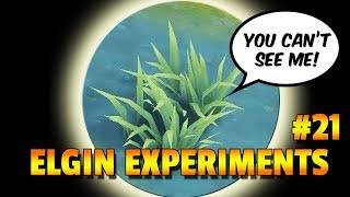 ALL ABOUT INVISIBILITY - ELGIN EXPERIMENTS #21