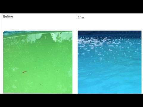 I have a green pool! Intex sand filter pump experiment