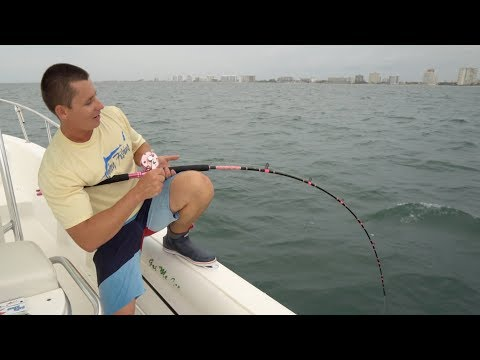 I Wasn't Ready... GIANT Fish Vs. LITTLE PINK Reel