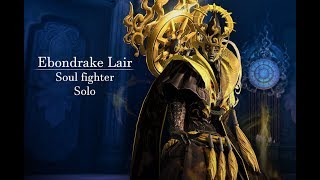 [Blade and Soul] Ebondrake Lair Solo - Soul Fighter