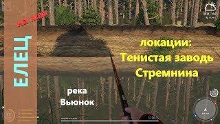 Русская рыбалка 4 - река Вьюнок -  И снова елец