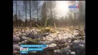 Наглядный урок ботаники в селе Путилово