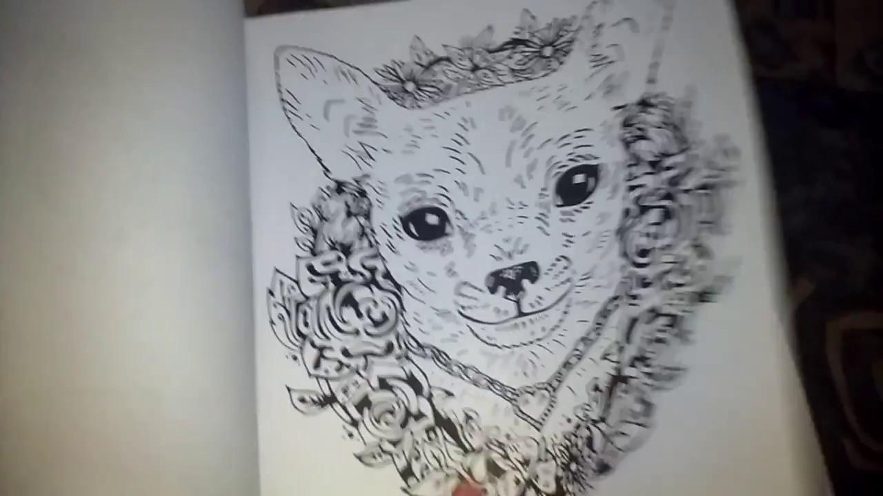 Mi Libro De Colorear De Mandalas De Perros