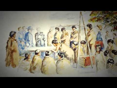 treaty of waitangi essay introduction