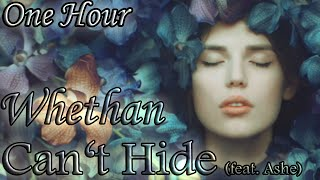 Whethan Can 39 T Hide Feat Ashe One Hour Loop