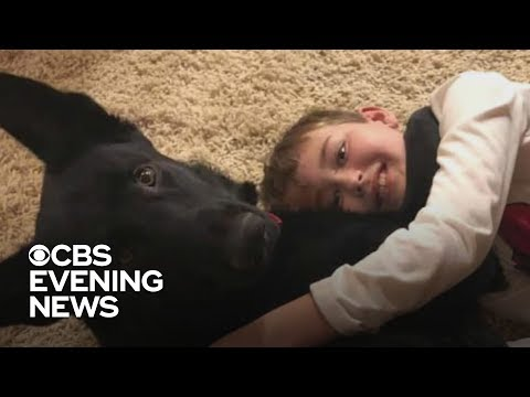 Meredith And AJ In The Morning - Boy Learns Of Cancer In Utah, Trucker Brings Him Dog