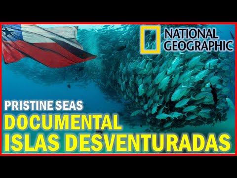Islas Desventuradas: El Chile Más Salvaje - National Geographic