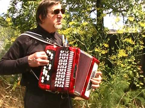 O Sole Mio  Accordion Italian Song