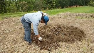 農作業で疲れない方法1 thumbnail