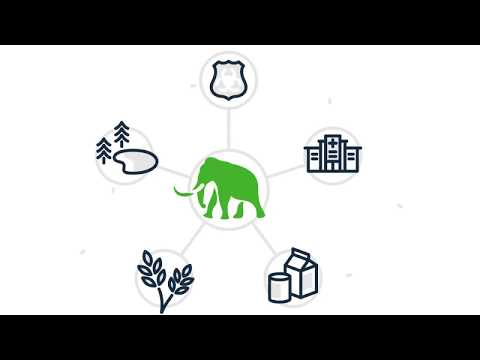 The Mammoth CRISPR Platform