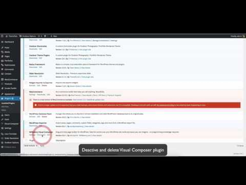 Auto Update theme using Envato Wordpress Toolkit plugin