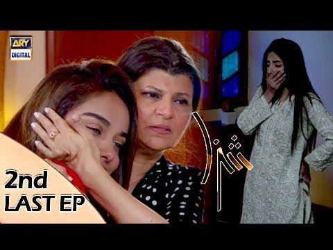 Shiza 2nd Last Episode - 18th November 2017 - ARY Digital Drama
