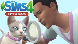 HOW TO VET - The Sims 4 Cats and Dogs | Veterinary Career Walkthrough