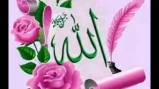 Rahma ~beautiful Nasheed ~ Talib al Habib